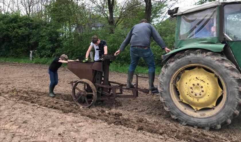 Nostalgische aardappelen poot machine