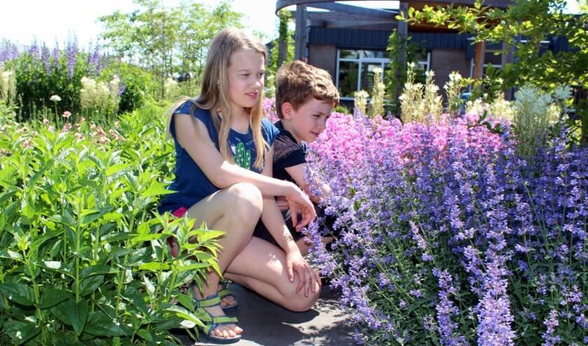 <p>Ilvy en D&aacute;niel zijn trots op de showtuin van papa Arno Rijnbeek. De kweker is deelnemer aan Open Kwekerijdag 2021.</p>