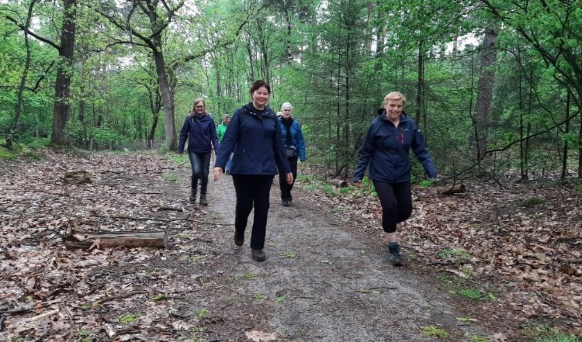 <p>Athlos wandelsporters genieten van de prachtige omgeving.</p>