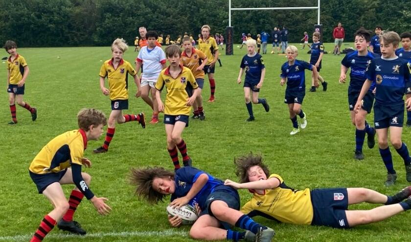 Stichtsche Rugby laat met een prachtige tackel zien hoe ze de bal veroveren op tegenstander 't Gooi