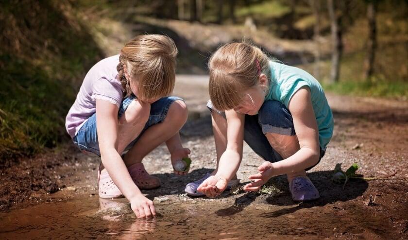 <p>Leve de Waterdiertjes! Ga je mee op zoek?&nbsp;</p>
