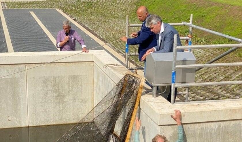 """<p>Frank Wissink (links) en Jos van Hees verrichten de openingshandeling bij de Vispassage Kandia.</p>  """"></p>    <p>Frank Wissink (links) en Jos van Hees verrichten de openingshandeling bij de Vispassage Kandia.</p>    <p>Waterschap Rijn en IJssel en Rijkswaterstaat hebben op vrijdag 4 juni in samenwerking met de Europese Unie officieel de vispassage bij gemaal Kandia in de gemeente Duiven opgeleverd. Met de komst van deze vispassage kunnen vissen, zoals Baars, Blankvoorn, Snoek, Snoekbaars, Zeelt, Ruisvoorn, Brasem, Paling en Winde, vrij van obstakels de binnenwateren van het hele stroomgebied van de Rijnstrangen tot in Duitsland bereiken.</p>    <p>Dat is belangrijk omdat vissen dan naar paaigebieden stroomopwaarts kunnen zwemmen om zich voort te planten. Dat is goed voor de visstand en de waterkwaliteit. De vispassage vergroot de passeerbaarheid voor vissen met gemiddeld een factor tien. De aanleg van de vispassage is gestart in september 2020 en aangelegd vanuit de Europese Kaderrichtlijn Water (KRW), om rivieren een schoon en gezond leefgebied te laten zijn voor dieren en planten. De vispassage bij gemaal Kandia ligt aan een populaire fiets- en wandelroute op de dijk nabij Groessen. De vispassage is voor iedereen toegankelijk.</p>    <p><strong>Verbeteren biodiversiteit</strong><br>Waterschap Rijn en IJssel is bestuurder Frank Wissink blij met de vispassage. """"Met de aanleg van de vispassage Kandia dragen we bij aan een goede en gezonde populatie van (vis-)soorten in het stroomgebied. Daarnaast richten we rivier- en beekmondingen zo in zodat deze aantrekkelijk zijn voor de dieren en planten die daar van nature voorkomen"""", aldus Wissink.</p>    <p>Directeur Jos van Hees van Rijkswaterstaat Oost-Nederland sluit hierbij aan. """"Door de nieuwe vispassage Kandia kunnen vissen gemakkelijk en veilig van het Pannerdensch Kanaal naar het Rijnstrangengebied zwemmen en vice versa. Zo versterkt de hele natuurlijke keten"""", aldus Van Hees.</p>    <p><strong>Blauw Knooppunt</st"""